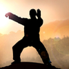 Tai Chi voor beginners
