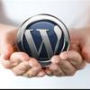 Maak uw eigen website met Wordpress