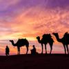 Beleef betoverend Oman