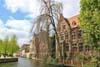 Kunst in Brugge - kunstbeschouwing