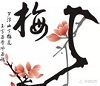 Cursus Chinese Taal & Cultuur