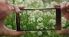 Fotograferen met je mobiel in Tiel