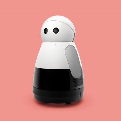 Robotica en kunstmatige intelligentie