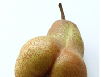 Lezing Voedsel en Verleiding