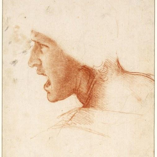 De tekeningen van Leonardo da Vinci