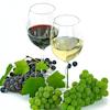 Wijnintroductiecursus met proeverij