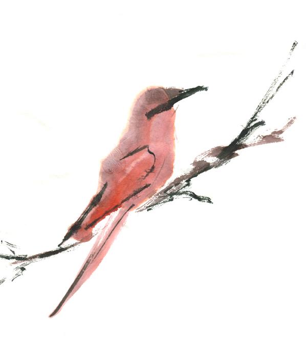 Chinees en Japans (Zen) schilderen - verlengde cursus (A)