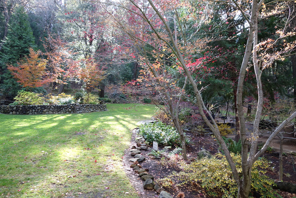 De tuin: Do's en Don'ts in de herfst