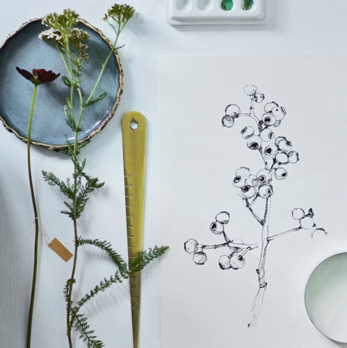 Botanisch tekenen - alle niveaus - creatief