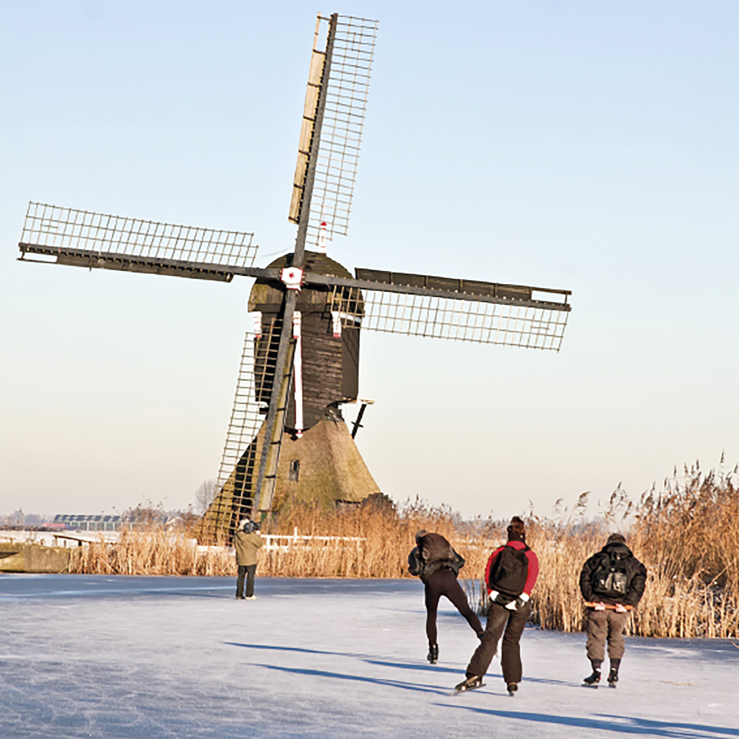 Nederlands 2, intensief - Dutch for Low-Intermediate students, intensive
