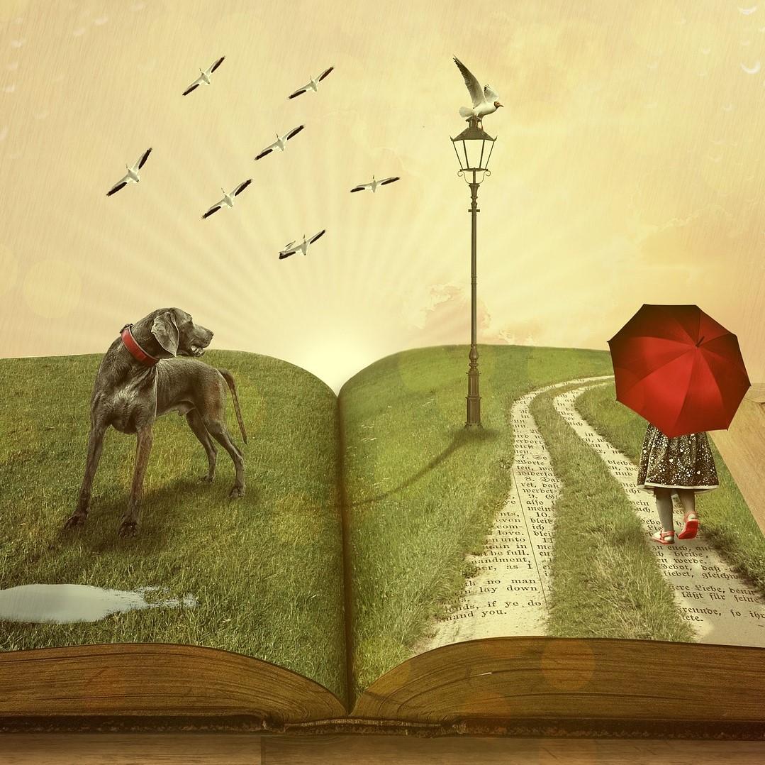 Schrijf jouw verhaal