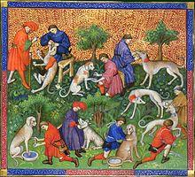 Dieren in de middeleeuwen
