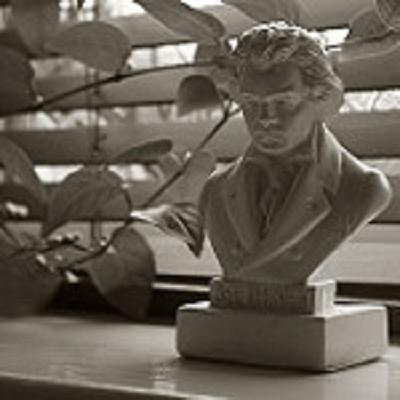 Lezing: Ludwig van Beethoven de 9 symfonieën
