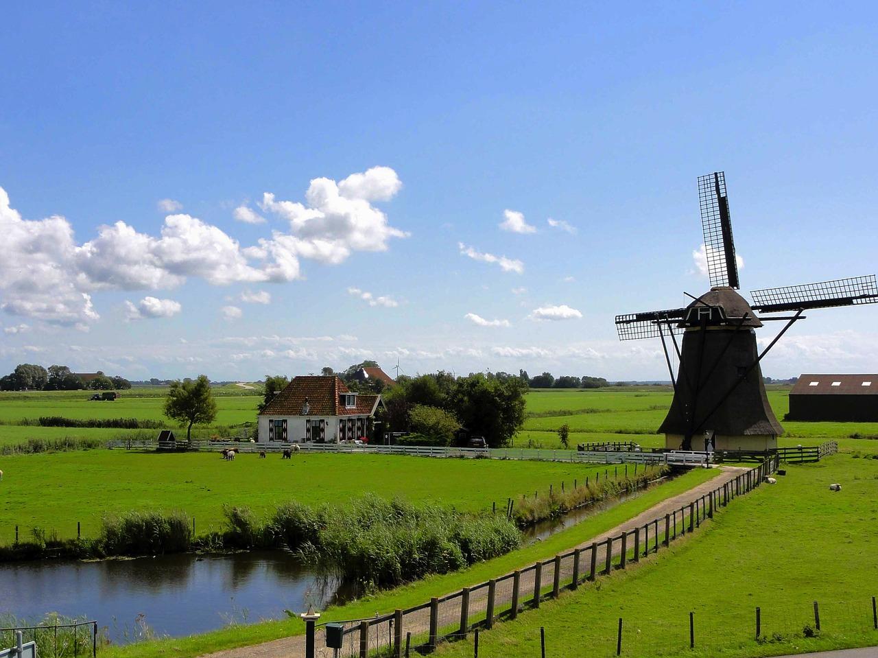 Nederlands voor Anderstaligen - (Online Cursus) B2 Gevorderden