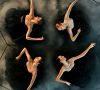 Introdans: come see us