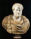 Cursus Aristoteles - de filosoof