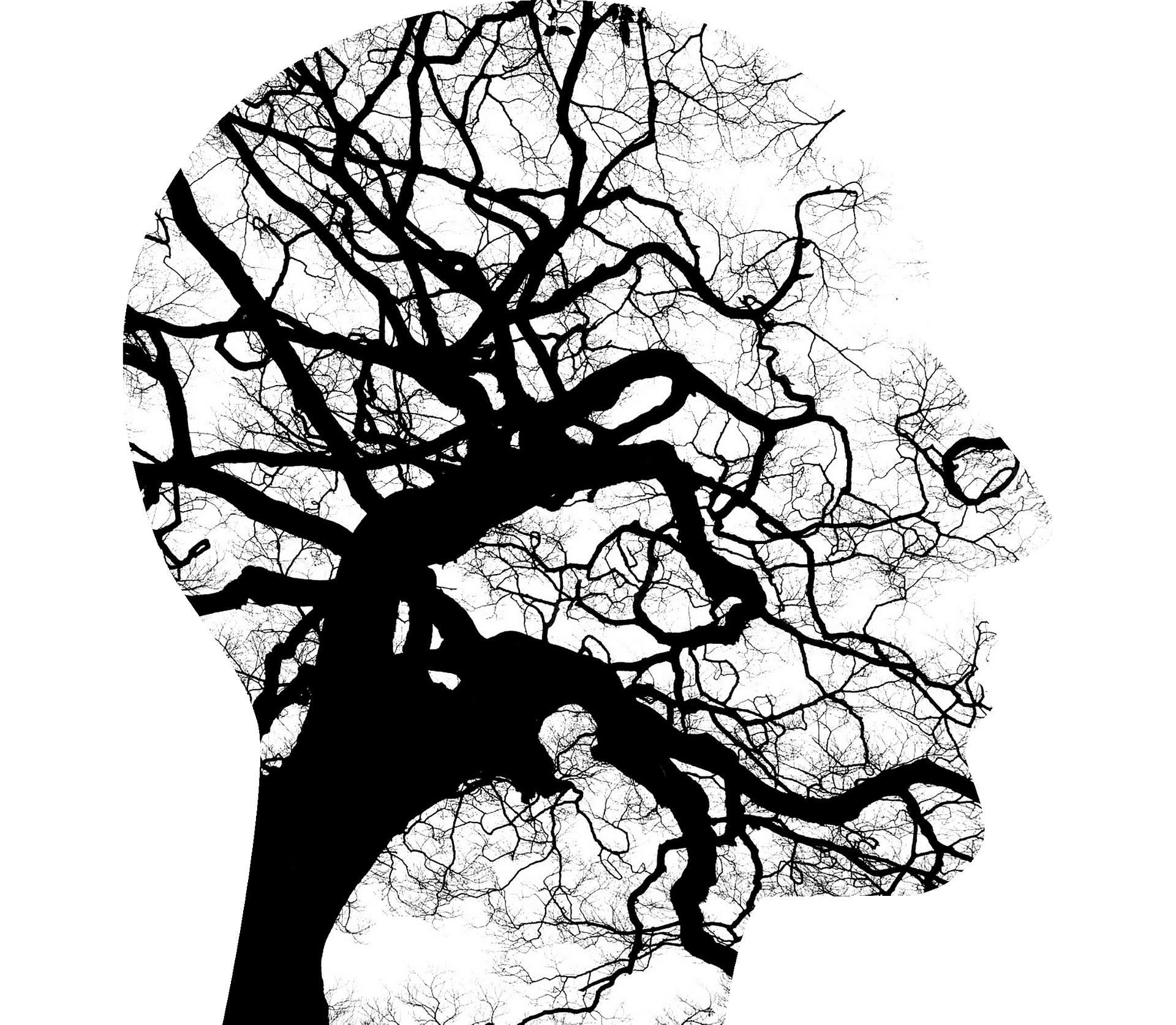 Psychologie, Inleiding in de Psychopathologie