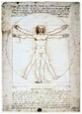 Leonardo da Vinci – De Synthese van Schoonheid en Waarheid