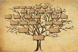 Genealogie voor beginners