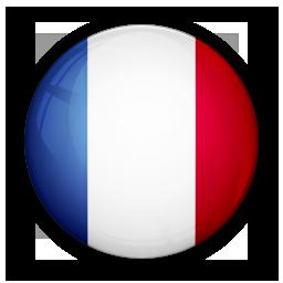 Frans niveau 6