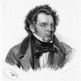 Over Schuberts Die schöne Müllerin