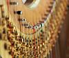 Cursus, meer over muziek