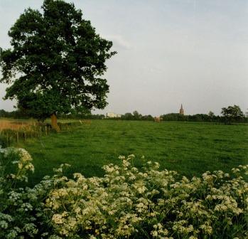 Hoogland en Amersfoort