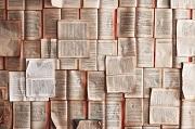 Twee keer sneller lezen,drie maal beter onthouden