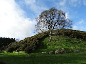 grafheuvel Dowth Ierland