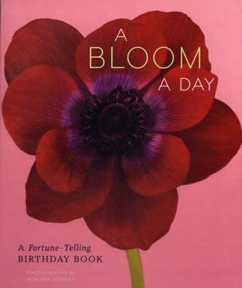 Creatieve Workshop: A Bloom a day