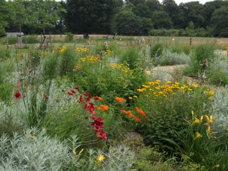 Ontwerp je klimaatvriendelijke tuin