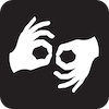 Dutch sign language course