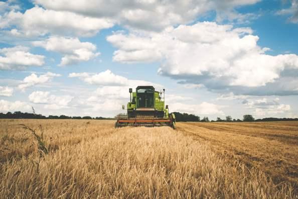 Voedselzekerheid, landbouw en plattelandsontwikkeling