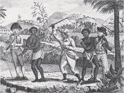 De slavenopstand in de Nederlandse kolonie Berbice (1763)