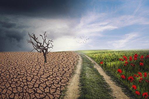 Klimaat, wat we zelf kunnen doen