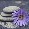 Easy Hatha Yoga – iets voor jou?