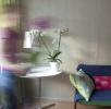 Cursus Vitale leefomgeving in je huis